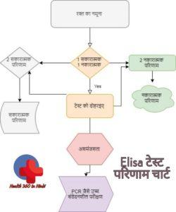 Flow Chart Elisa test