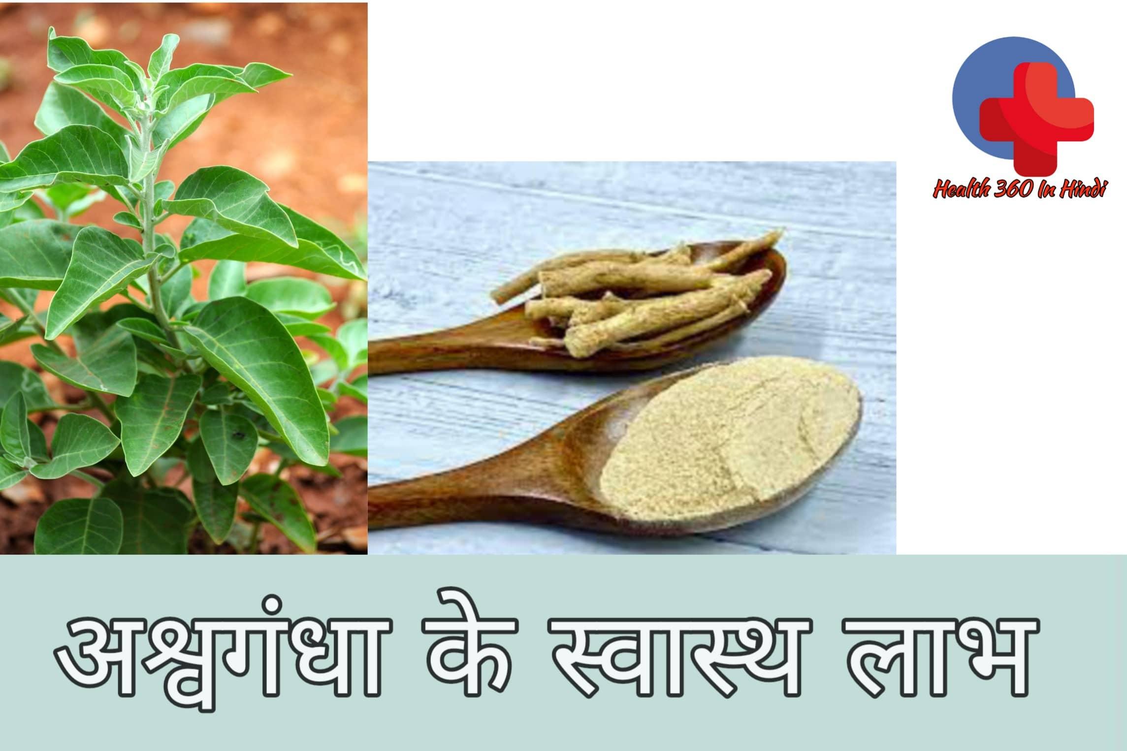 अश्वगन्धा के औषधीय गुण  Ashwagandha Benefit in Hindi